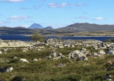 Hardangervidda med Gaustatoppen
